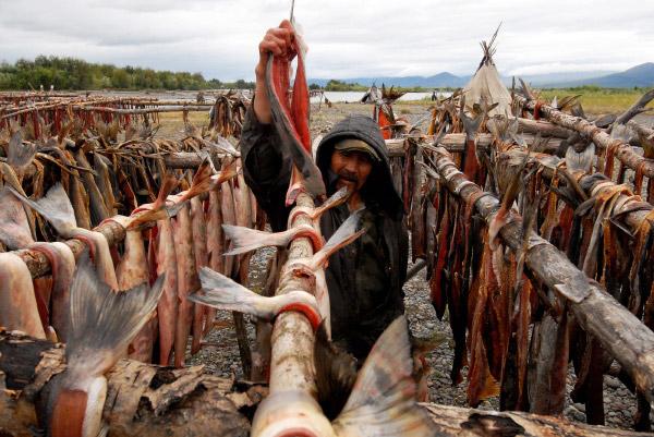 видео как эскимосы ловят рыбу